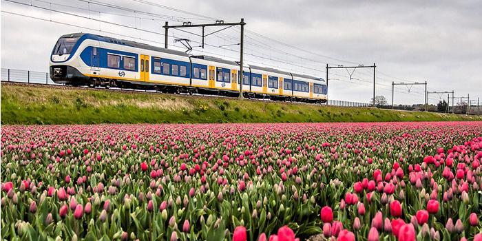 Olanda, primato mondiale per ferrovia ad energia rinnovabile