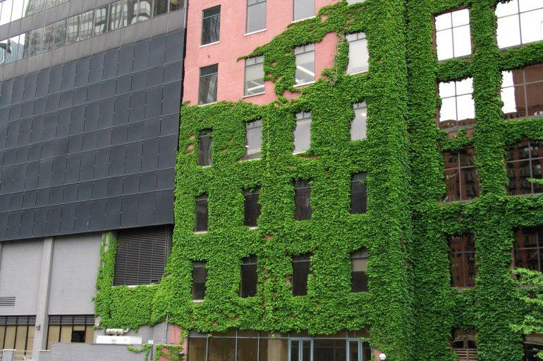 Energia sostenibile per il settore non profit