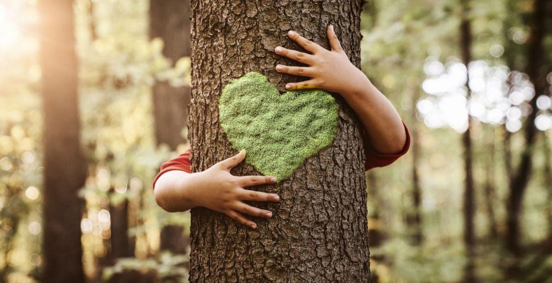 Giornata Mondiale dell'Ambiente: cambiamo prospettiva sulla sostenibilità